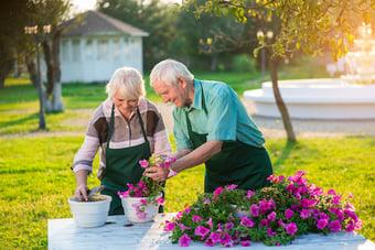 Personnes agees qui jardinent pour le plaisir